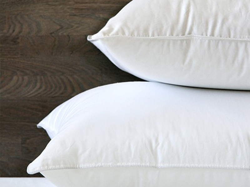 Chinook Down Pillow <br>by Cuddle Down