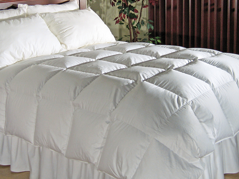 Malahat Feather/Down Duvet by Twin Ducks