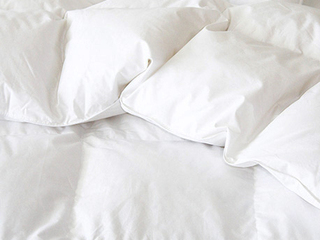 GOTS Organic Brome Down Duvets <br>by Cuddle Down