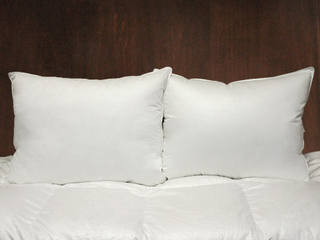 Esprit Cushion Forms <br>by Cuddle Down