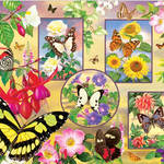 Butterfly Magic 85062