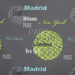 Cosmopolitan Cities Shower Curtain