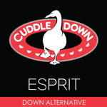 Esprit Bolster Pillows by Cuddle Down
